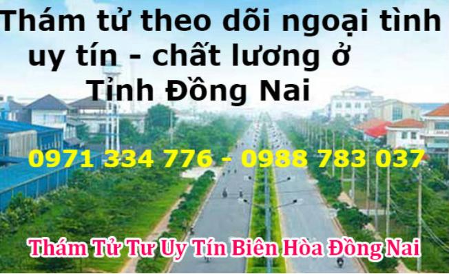 Thám tử tư Đồng Nai